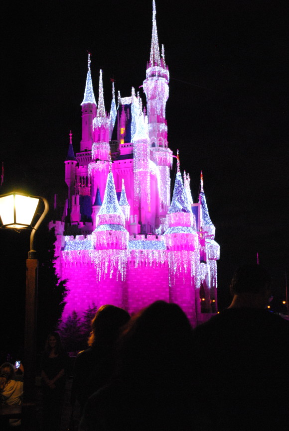 Top 5 Disney World Tips