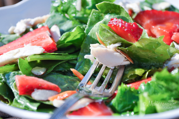 Strawberry Baby Greens Salad with Agave Cilantro Dressing - Mediterranean Baby (3)