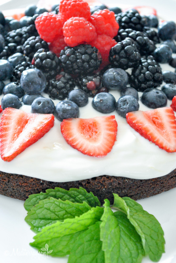 Red White and Blue Brownie Mediterranean Baby (9)