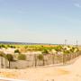 Ocean City New Jersey Mediterranean Baby (98)