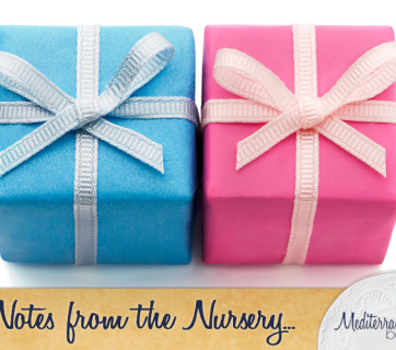 Notes-for-the-Nursery-Gender