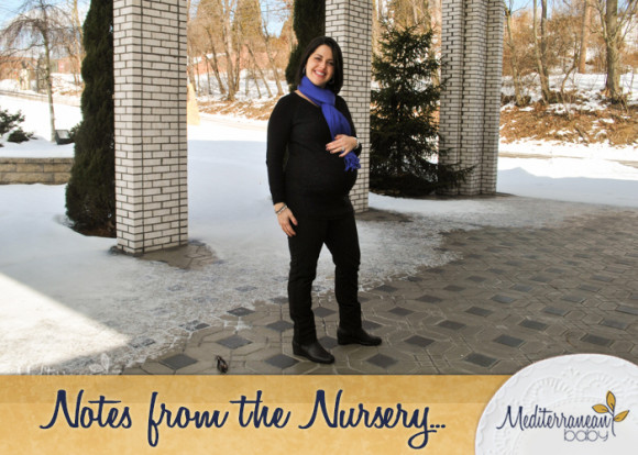 notes-from-the-Nursery-Third-Trimester